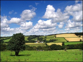 devon-countryside