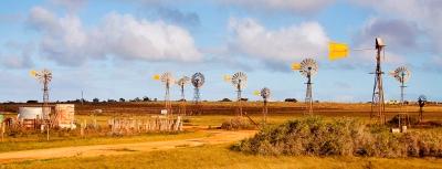 Penong_windmills