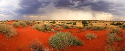 Australian Desert - A fragile ecosystem