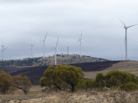 look-at-turbines-and-wind-direction